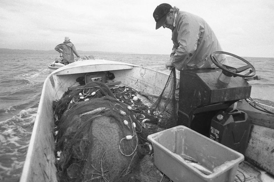 Good Fishing Catch